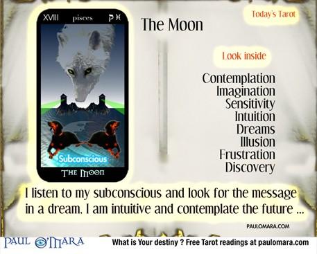 Tarot the Moon - Flux & Re-flux